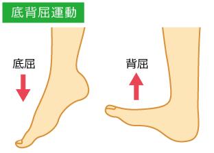 足首の捻挫-足関節底屈背屈